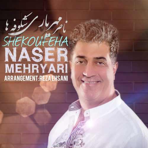 دانلود موزیک جدید ناصر مهریاری شکوفه ها